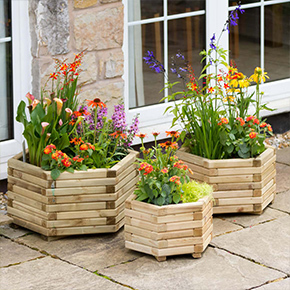 Planters and Raised Beds and Grow Your Own