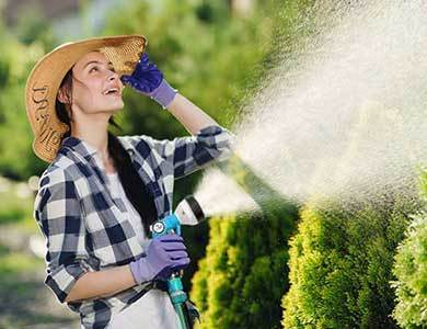GardenBargains - Gardening For Everyone